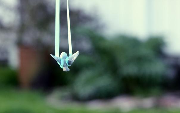 Фото обои полет, игрушка, веревки, сад, toy, птенец, bird