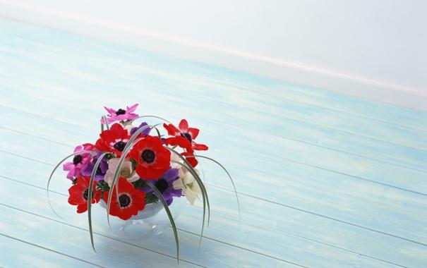 Фото обои цветы, красота, red, flowers, композиция