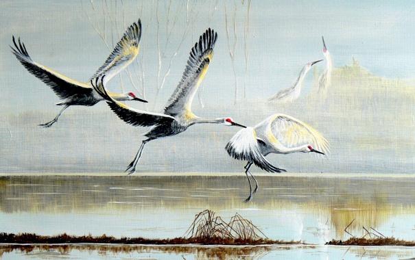 Фото обои птицы, картина, аисты