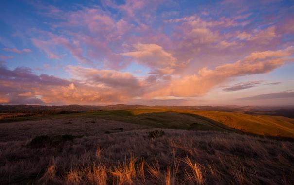 Фото обои зелень, небо, трава, облака, пейзаж, закат, природа