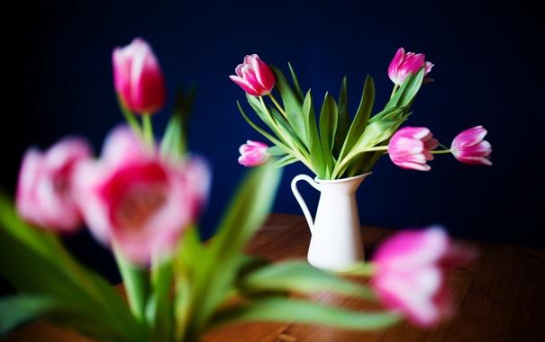 Фото обои цветы, лепестки, тюльпаны, розовые