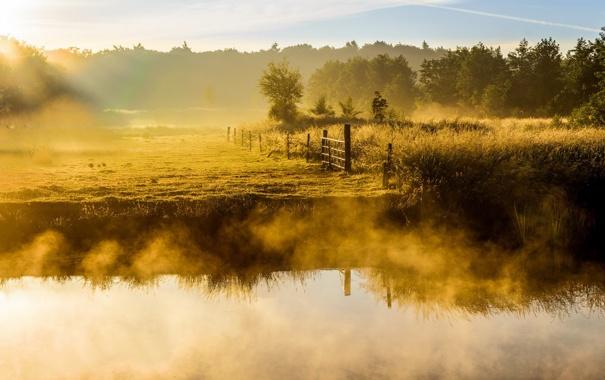 Фото обои туман, река, утро