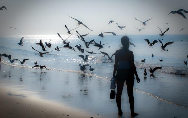 Фото обои море, девушка, птицы