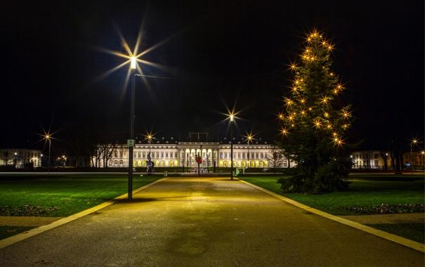 Фото обои ночь, город, фото, елка, Германия, фонари, гирлянда