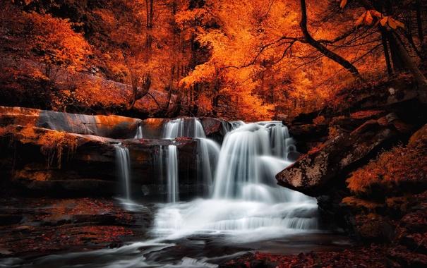 Фото обои лес, камни, листва, водопад, Осень