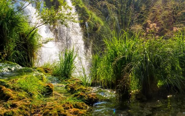 Фото обои трава, водопад, мох, солнечно, кусты, Хорватия, Plitvice National Park