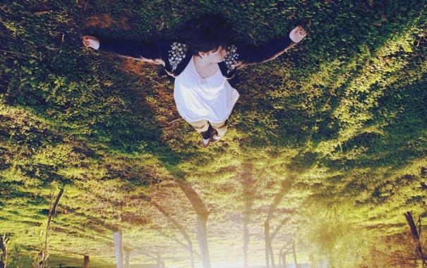 Фото обои лес, трава, свет, деревья, девушки, настроение, отдых
