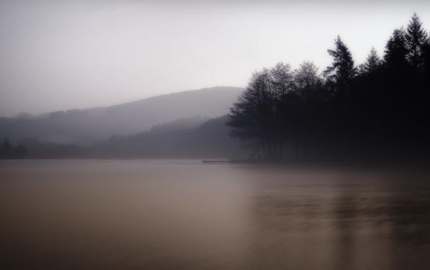 Фото обои лес, деревья, природа, туман, озеро, холмы, утро