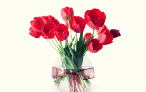 Фото обои цветы, букет, тюльпаны, красные, ваза