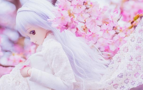 Фото обои игрушка, кукла, сакура, блондинка