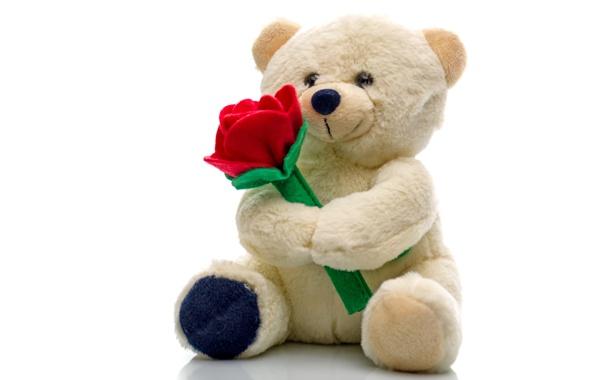 Обои игрушка, мишка, плюшевый, bear, teddy картинки на ...: http://badfon.ru/wallpaper/teddy-bear-mishka-igrushka.html