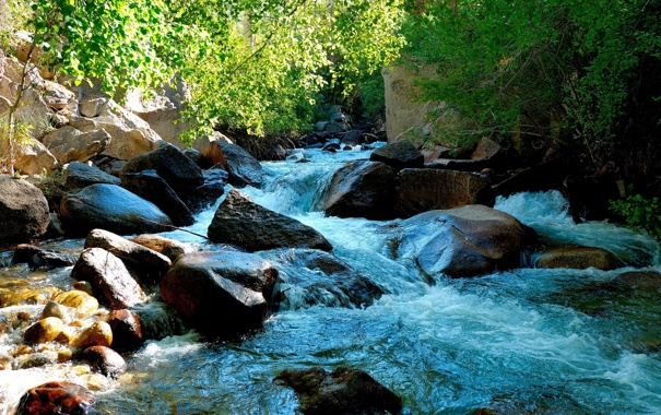 Фото обои зелень, вода, природа, камни, фото, растения, обои на рабочий стол