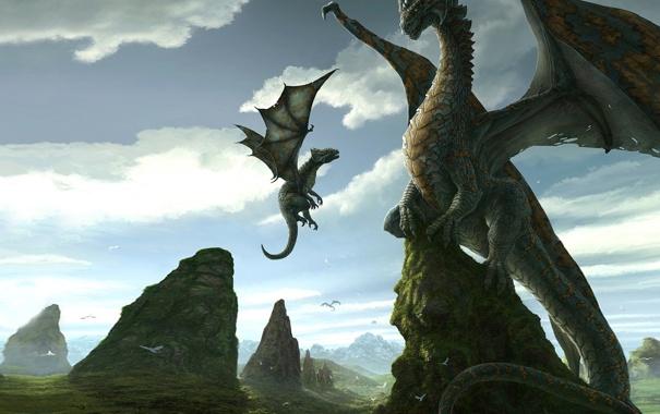 Фото обои птицы, природа, скалы, драконы, утесы, детеныш, мать