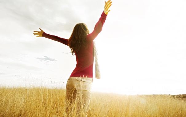 Фото обои поле, свобода, девушка, солнце, макро, фон, widescreen