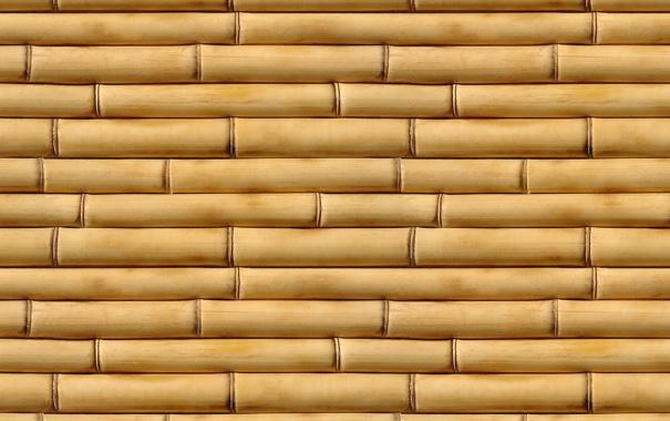 Фото обои yellow, pattern, bamboo