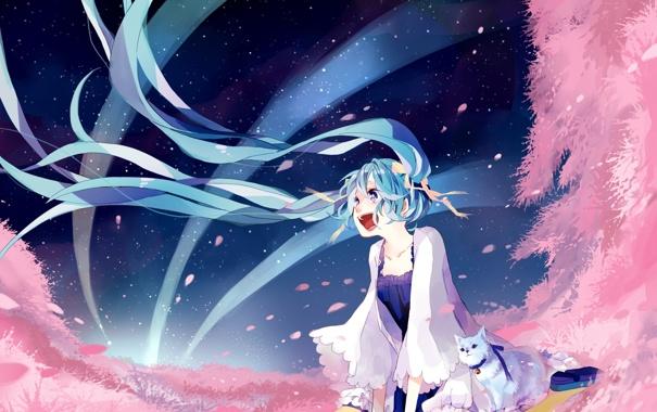 Фото обои небо, кот, девушка, звезды, лепестки, сакура, арт