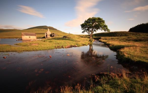 Фото обои пейзаж, река, дерево, развалины