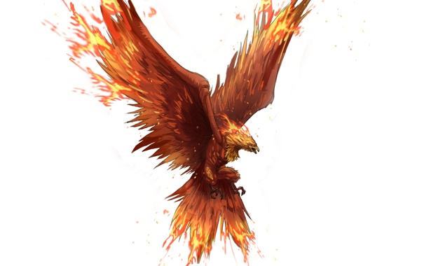 Фото обои полет, фон, фантастика, птица, крылья, арт, феникс