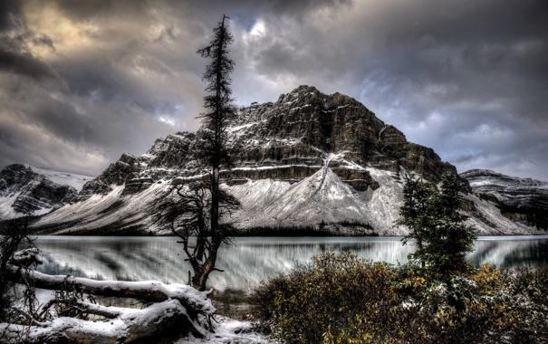 Фото обои пейзаж, горы, озеро, дерево