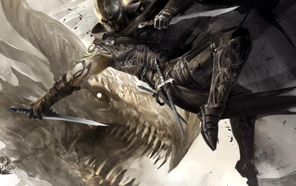 Фото обои дракон, воин, арт, guild wars, кинжалы