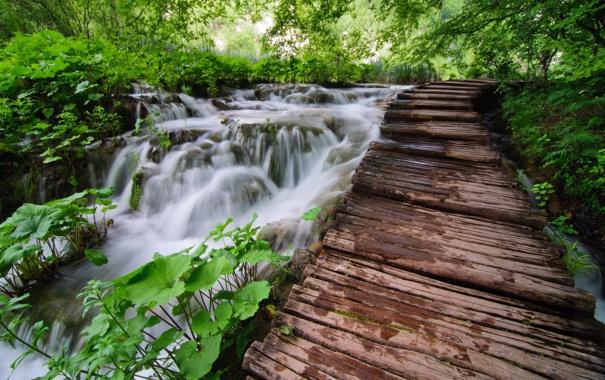 Фото обои природа, река, мост