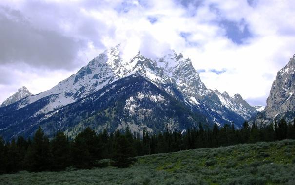 Фото обои лес, облака, снег, горы, поляна