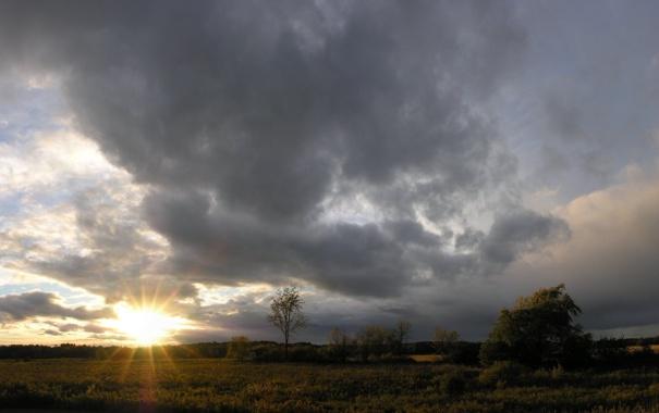 Фото обои трава, солнце, фото, пейзажи, дома, обои для рабочего стола
