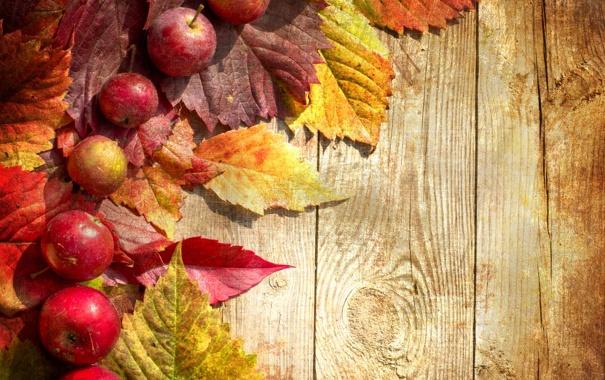 Фото обои осень, green, яблоки, доски, зеленые, красные, red