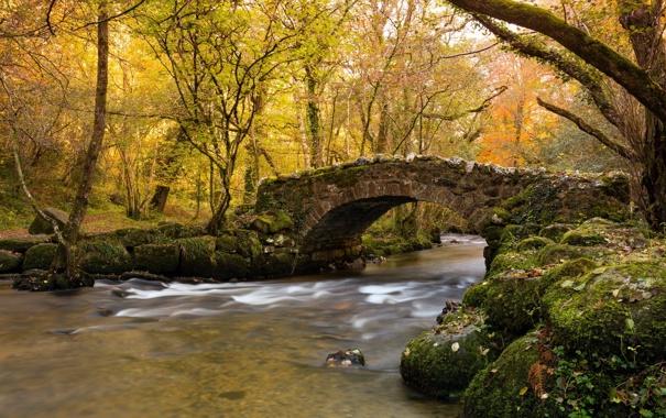 Фото обои осень, мост, река
