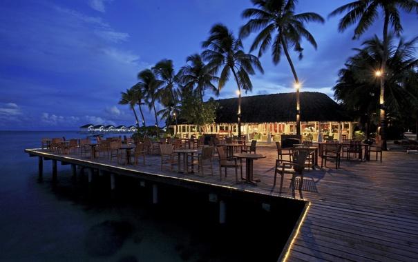 Фото обои пальмы, океан, вечер, ресторан