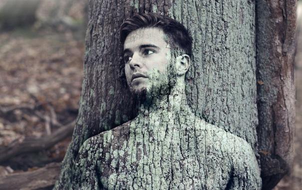 Фото обои парень, фон, дерево