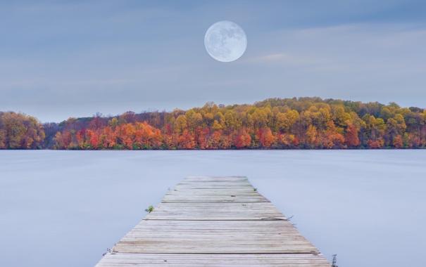 Фото обои лес, осень, природа, пристань, озеро, луна