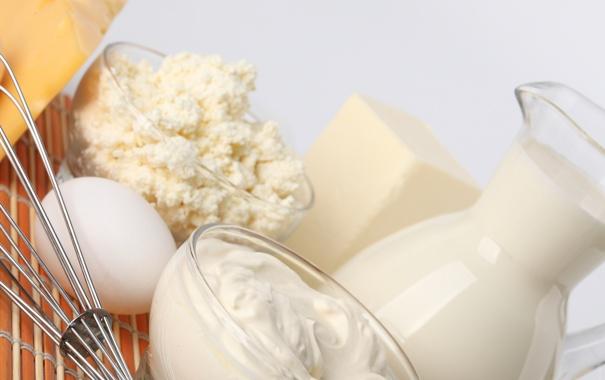 Фото обои яйцо, еда, сыр, молоко, сметана, продукты