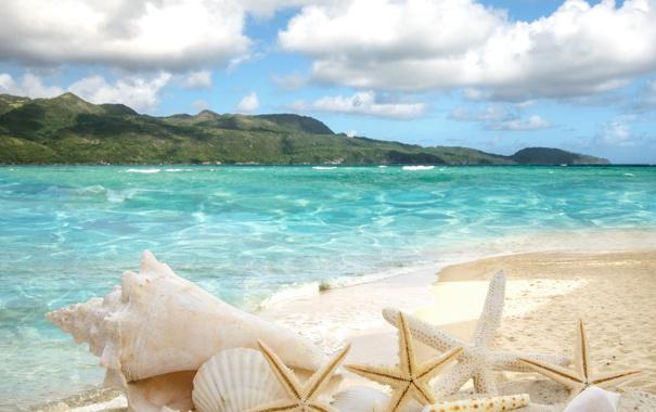 Фото обои песок, море, пляж, солнце, звезды, ракушки, summer