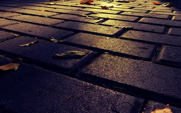 Фото обои дорога, осень, город, парк