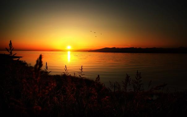 Фото обои небо, солнце, пейзаж, закат, горы, природа, растения