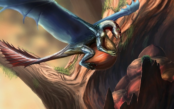 Фото обои дерево, дракон, существо, арт, орехи, дупло, Orm_Irian