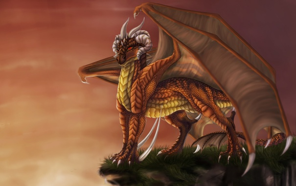 Фото обои небо, взгляд, скала, фантастика, дракон, крылья, арт