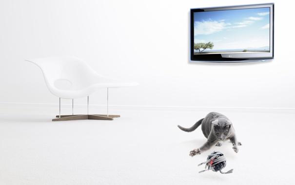 Фото обои кот, клубок, провода, кресло, экран, изображение