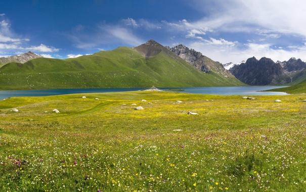 Фото обои небо, облака, цветы, горы, озеро, камни, луг