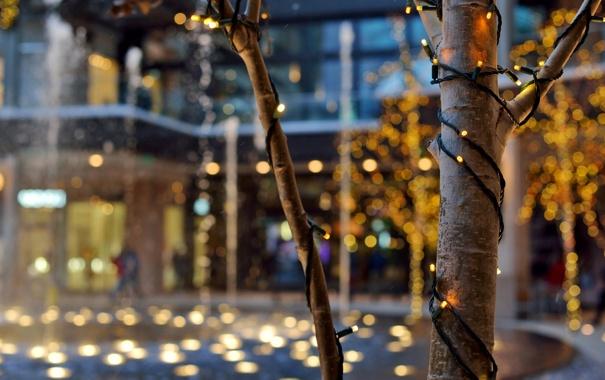 Фото обои зима, деревья, город, огни, здания, вечер, Юта
