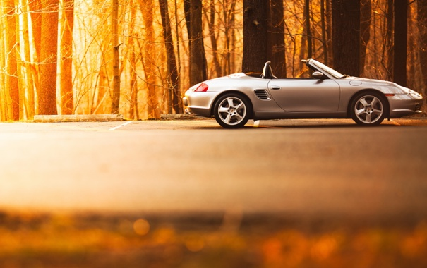 Фото обои деревья, кабриолет, порше, Porsche Boxster