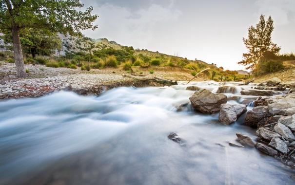 Фото обои пейзаж, природа, река, камни, дерево
