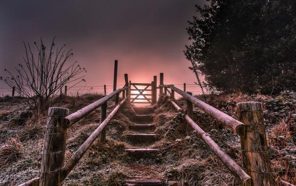 Фото обои пейзаж, закат, лестница