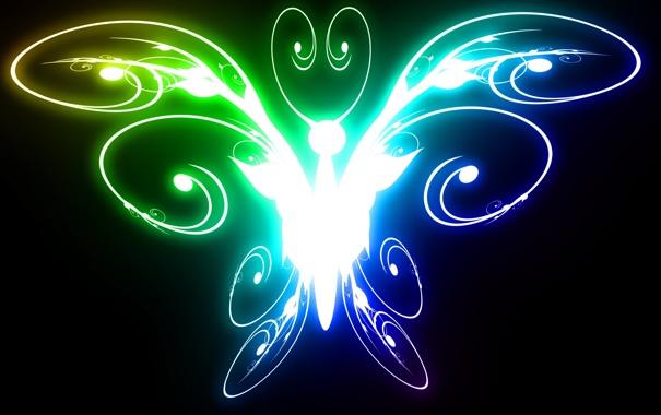 Фото обои свет, черный, цвет, Бабочка, яркая