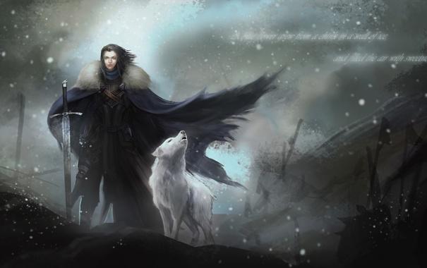 Фото обои лютоволк, Игра Престолов, Джон Сноу, доспехи, плащ, меч, метель