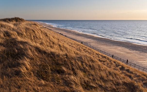 Фото обои песок, море, волны, пляж, лето, трава, закат