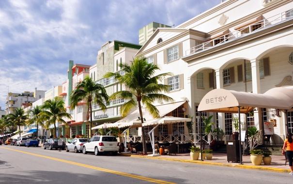 Фото обои город, пальмы, улица, америка, street, магазины