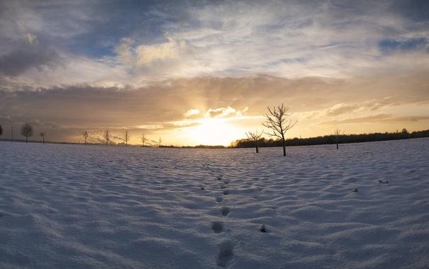 Фото обои зима, след, Небо