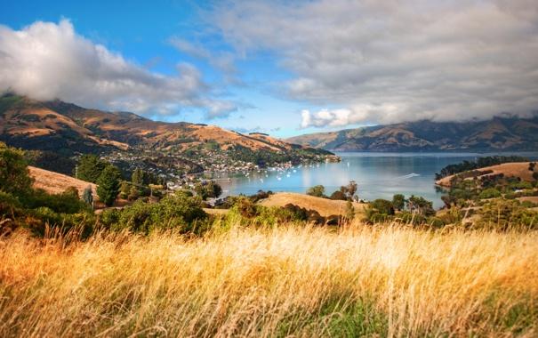 Фото обои Новая Зеландия, New Zealand, Aotearoa, south island, Akaroa